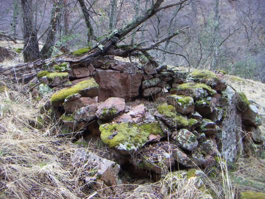 На одной из стоянок мы нашли вот такие остатки каменного жилища